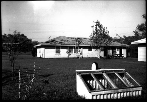 hurricane-carla-damage
